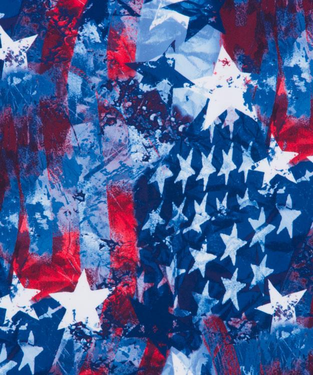 SKINZ-swimwear-American-Patriotic-3121